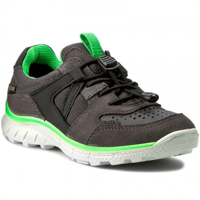 Shoes ECCO - Biom Trial Kids GORE-TEX 70276259623 Slate/Black/Dark Shadow