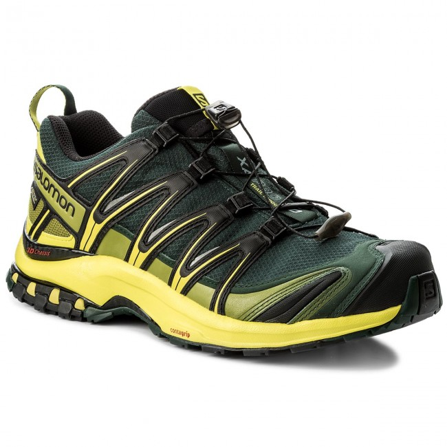 Shoes SALOMON - Xa Pro 3D Gtx GORE-TEX 398526 29 V0 Darkest Spruce/
