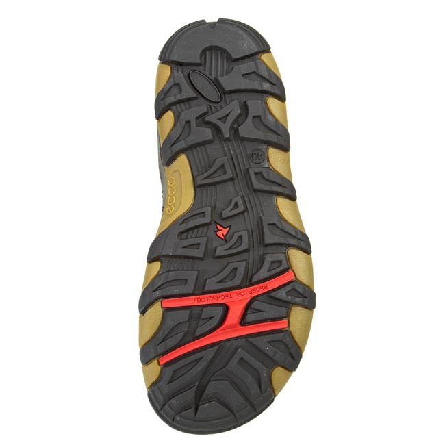 eaab715b9ec591 Sandals ECCO - Terra VG Sandal 82101456340 Black Dark Shadow - Sandals -  Mules and sandals - Men s shoes - www.efootwear.eu