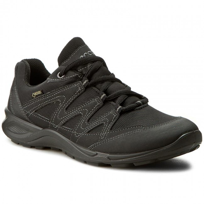 Shoes ECCO Terracruise Lt GORE TEX 82575351052 BlackBlack
