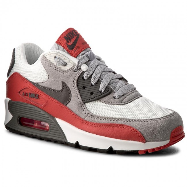 Shoes NIKE Air Max 90 (GS) 705499 003 Wlf GryGry ChillngRd Smmt