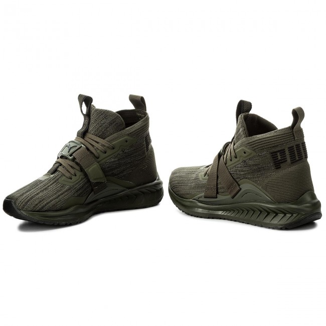 differently 0079a 44747 Shoes PUMA - Ignite EvoKnit 2 190454 04 Forest Night/Black/Quiet Shade