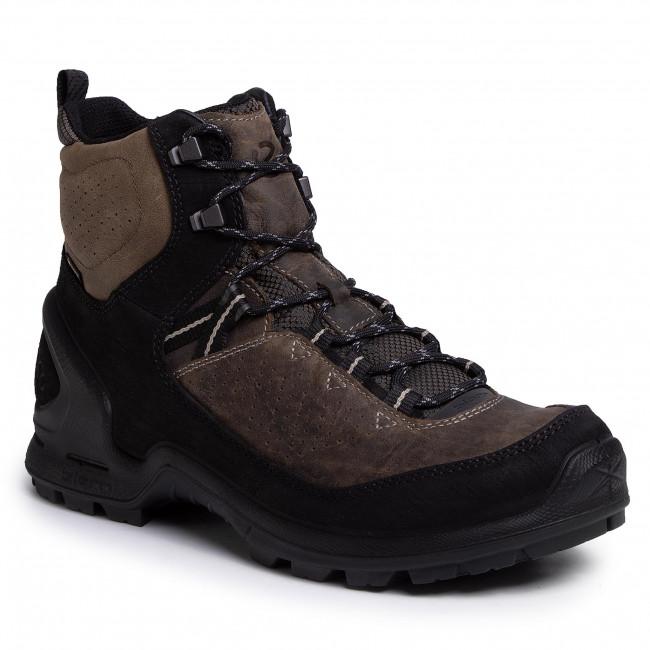 Trekker Boots ECCO - Biom Terrain M GORE-TEX 82358456665 Black/Tarmac