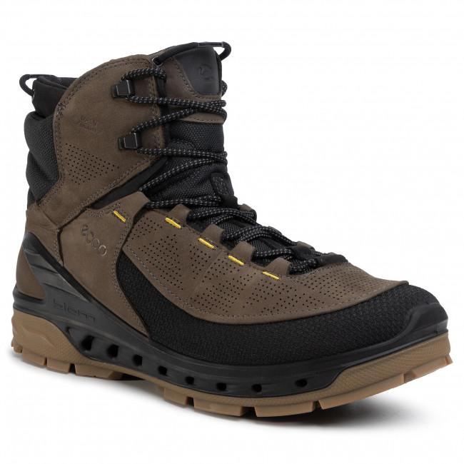 Trekker Boots ECCO - Biom Venture TR M GORE-TEX 85466456665 Black/Tarmac