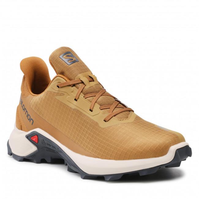 Footwear SALOMON - Alphacross 3 414458 26 V0 Cumin/Rainy Day/Bronze Brown