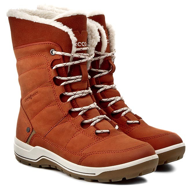Fantastic 21 Popular Ecco Snow Boots Womens | Sobatapk.com