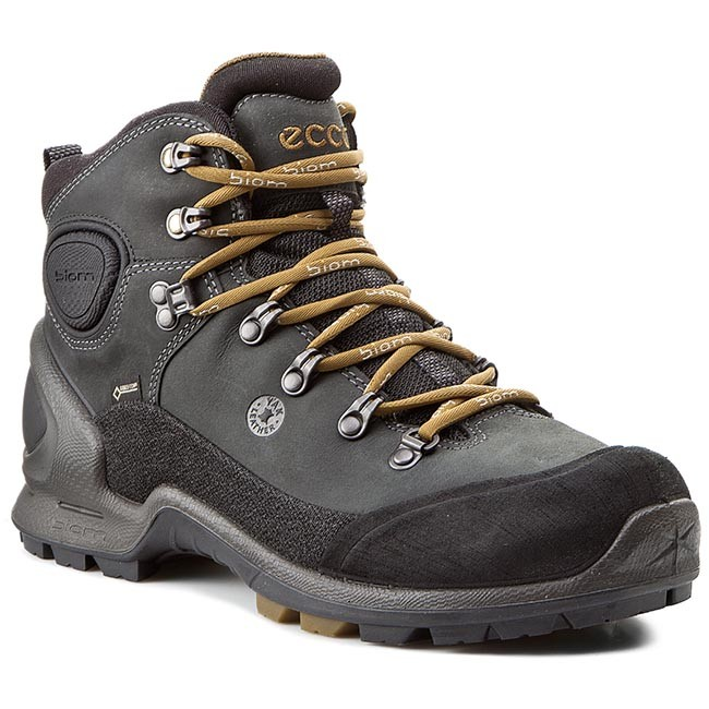Hiking Boots ECCO - Biom Terrain 82355458654 Black/Black/Dried Tobacco