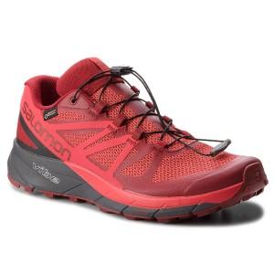 Shoes SALOMON Sense Ride Gtx Invisible Fit GORE TEX 404940