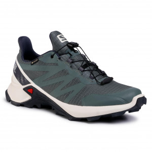 Salomon men's shoes check professional models of the brand
